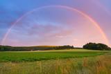 Fototapeta Tęcza - Rainbow over Swedish farm field