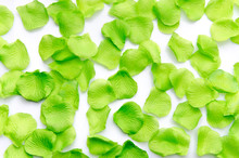 Background Of Green Petals