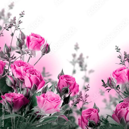 Naklejka na szybę Bouquet of delicate roses, floral background