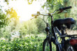 canvas print picture - Fahrrad in der Natur