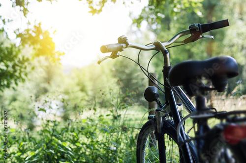 Garden Poster Bicycle Fahrrad in der Natur