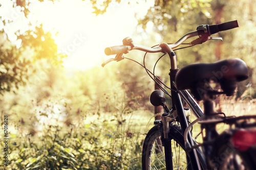 Tuinposter Fiets abgesteltes Fahrrad im Sonnenlicht