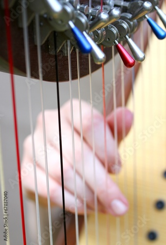 Fotografía female hand while plucking the strings of a harp 1