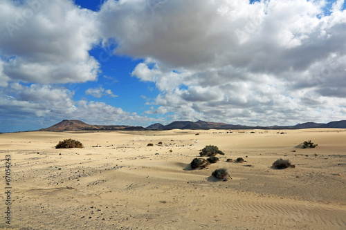 Poster de jardin Desert de sable Dünen auf Fuerteventura