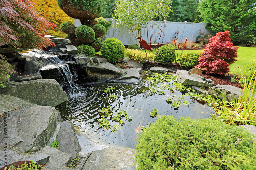 Fototapety, obrazy: Home tropical garden with pond