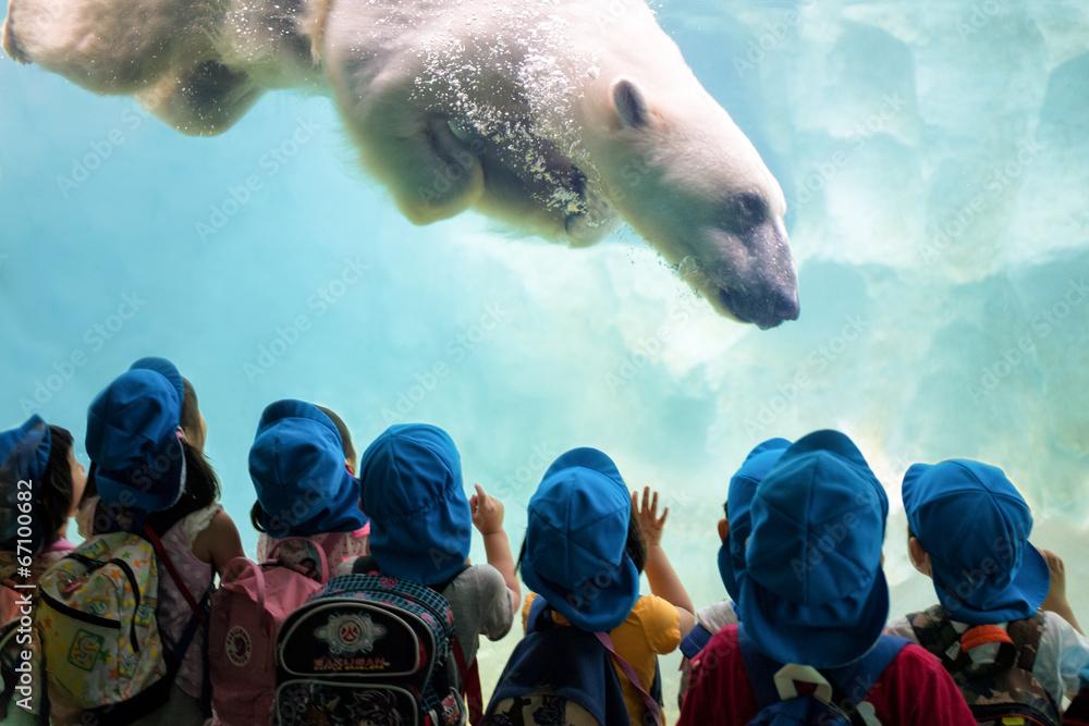 Fototapeta Eisbär taucht ab