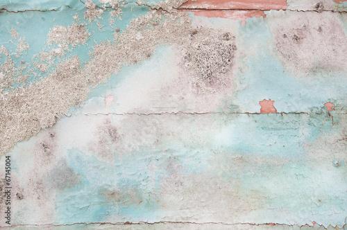Obraz na płótnie Shabby Chic: tło drewna z flotsam i muszli