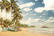 tropical paradise beach with coconut trees