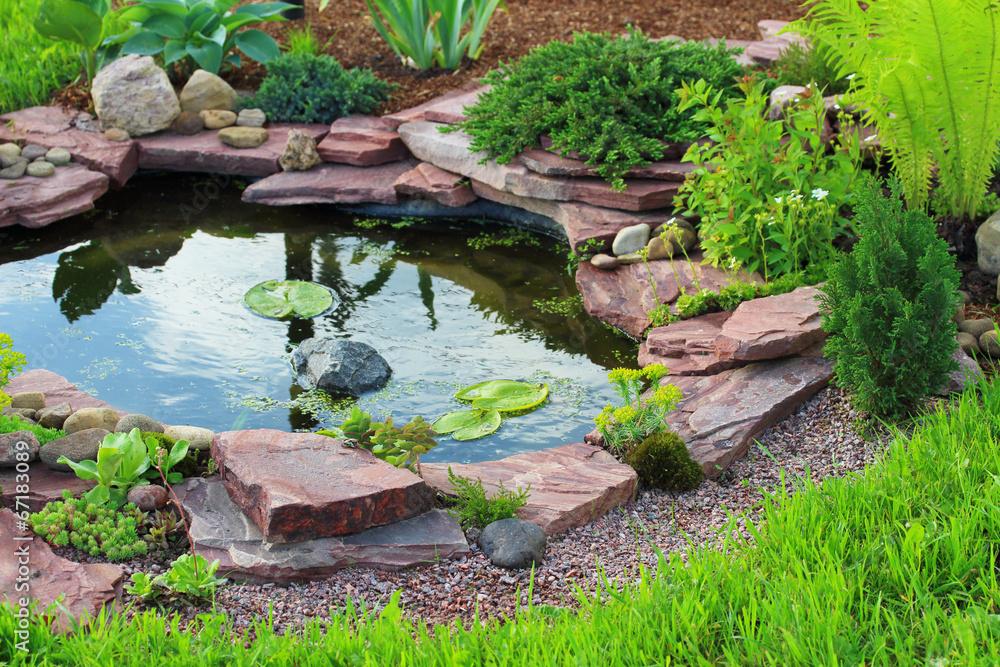 Fototapety, obrazy: Pond in landscape design.