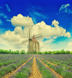 Lavender field with windmill and dramatic blue sky in Provence