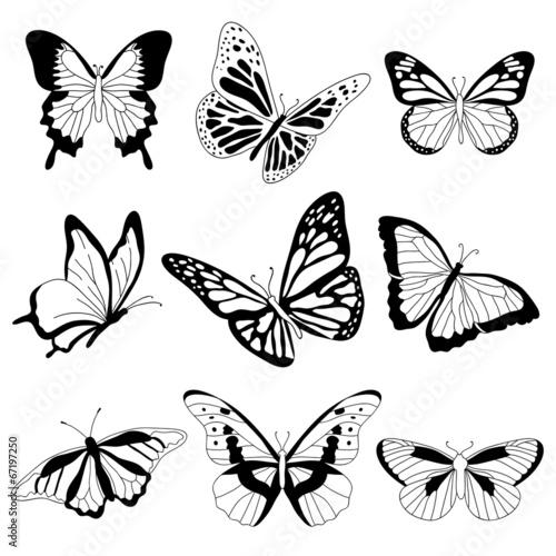 Photo sur Toile Papillons dans Grunge Vector butterflies on white background