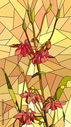 wektorowa-ilustracja-kwiat-czerwieni-kolombina