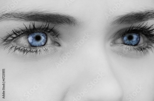 Poster Iris Blue eyes on grey face