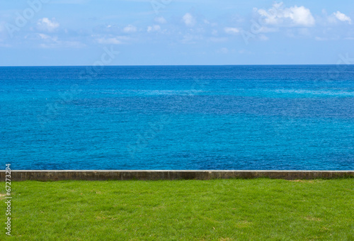 Blue sky sea view with lawn foreground