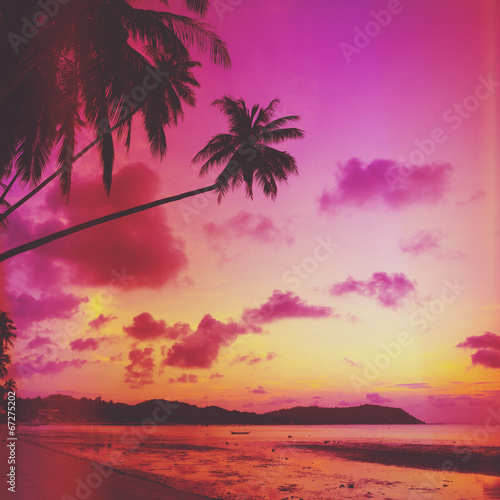 Poster Corail Tropical beach with palm tree at sunset