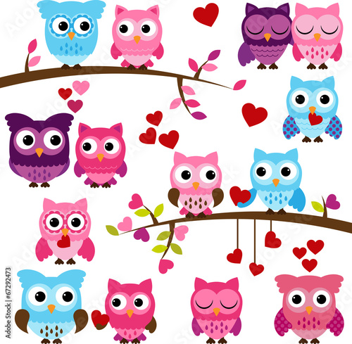 Deurstickers Uilen cartoon Vector Set of Wedding Themed Owls and Branches