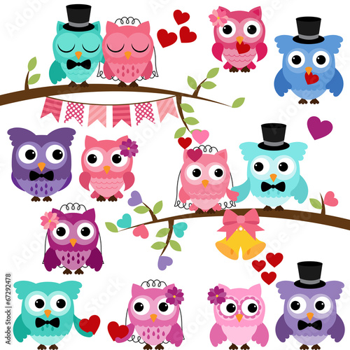 Deurstickers Uilen cartoon Vector Collection of Valentine's Day or Love Themed Owls