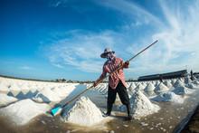 People Piling Up Sea Salt In Farm