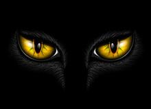Yellow Cat's Eye