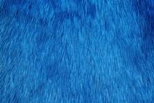 Blue Fur Background
