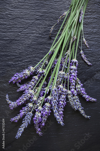 Fotobehang Lavendel Lavande ardoise