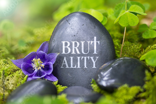 Fotografia, Obraz  Brutality