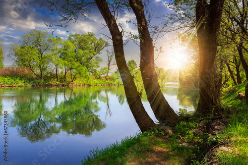Printed kitchen splashbacks River forest river with stones and grass at sunset