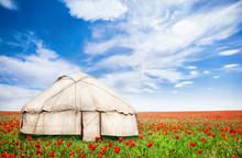Urta Nomadic House At Poppy Flowers Field