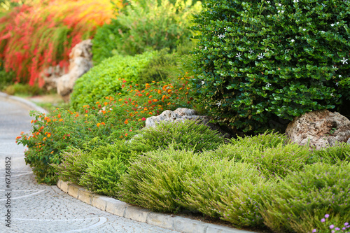 Papiers peints Pistache Beautiful landscaping in garden