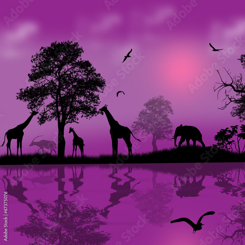 Poster Violet Wild african animals silhouettes