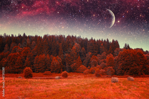 Fotobehang Baksteen autumn night infrared photography. Elements of this image furnis