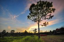 Phu Rua National Park