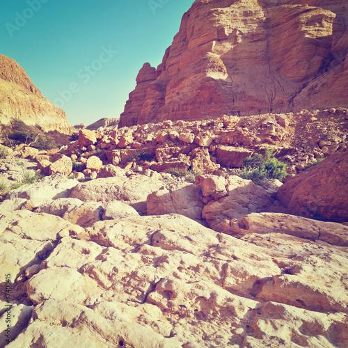 Foto op Plexiglas Crimson Desert