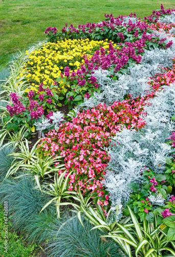 Deurstickers Groene Autumn flowerbed composition