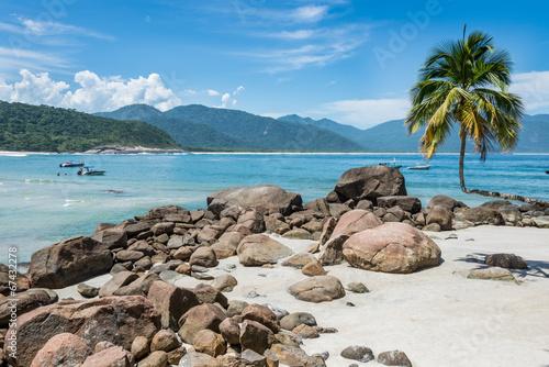 Fotografie, Obraz  Perfect One Palm Tree Beach, Ilha Grande Island. Tropical Paradi