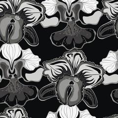 Fototapeta Jednolite czarne tło z szarymi orchidea