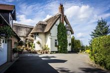Warwickshire Thatch