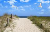 Mit großen Schritten in Richtung des Strandes