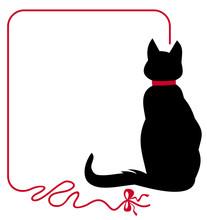 Black Cat In Red Collar
