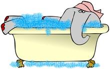 Elephant In A Bubble Bath