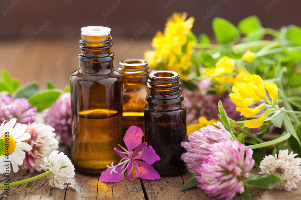 Fototapety, obrazy: essential oils and medical flowers herbs