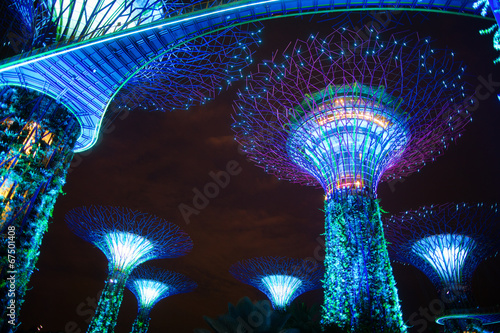 Photo  The Supertree at Gardens by the Bay by night