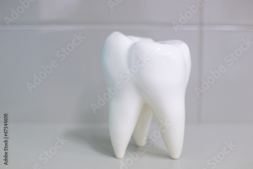 Dental office accessories tooth root
