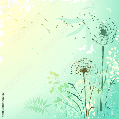 Fotobehang Vlinders in Grunge Fresh Dandelion Background