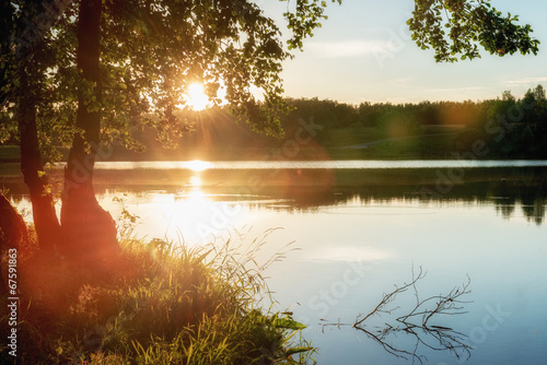 Summer landscape with lake and tree. Canvas Print