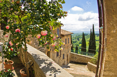 Photo Stands Tuscany Roses at balcony in San Gimignano, Tuscany landscape background