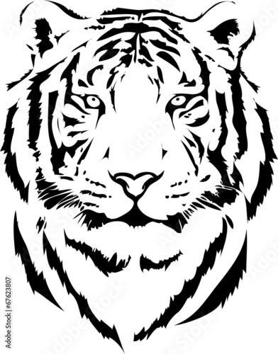 Fotografía tiger head in black interpretation 2