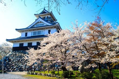 Fotobehang Tokyo Nagahama Castle