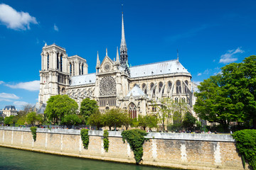 Kathedrale notre-dame in Paris