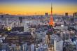Tokyo Japan at Minato